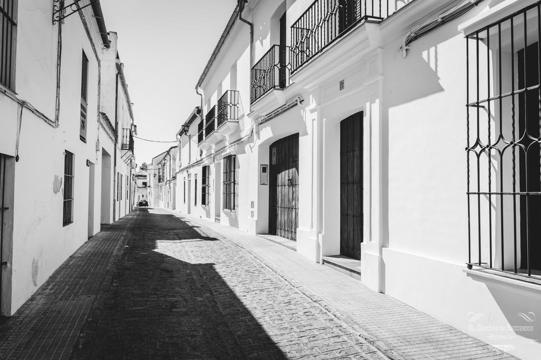 Fotógrafo de bodas en Sevilla-2